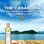 BUNGALOW BEACH BAR_CIROC PINEAPPLE TABLE TENT_4x6 JAS15